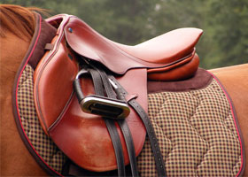Saddle a horse